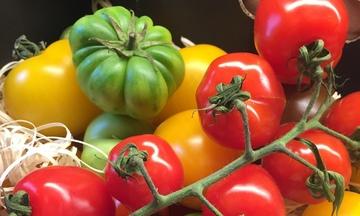 Menu image, Italian Menu (Vegetarian)